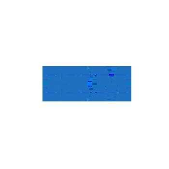 IBM_or